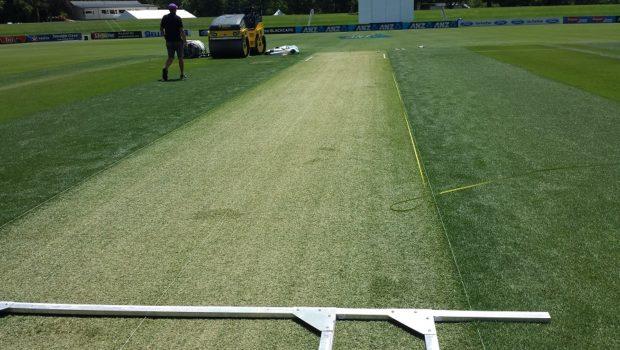 Pitch against Sri Lanka