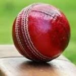 Mr. Cricket
